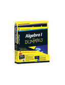 Algebra l For Dummies Bundle