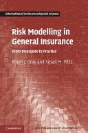 Risk Modelling in General Insurance