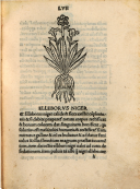 Page lvii