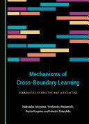 Mechanisms of Cross Boundary Learning