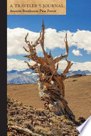 Ancient Bristlecone Pine Forest: A Traveler's Journal