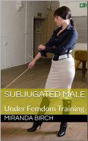 Subjugated Male (Hard Femdom)