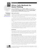 Olives  Safe Methods for Home Pickling