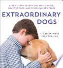 Extraordinary Dogs