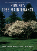 Pirone s Tree Maintenance