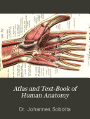 Pdf Atlas and Text-Book of Human Anatomy