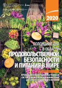 STATE OF FOOD SECURITY AND NUTRITION IN THE WORLD 2020  RUSSIAN EDITION   Book