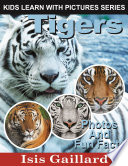 Tigers  Photos and Fun Facts for Kids
