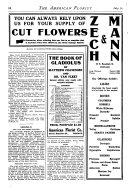 American Florist Pdf/ePub eBook