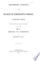 Ophiurid   and Astrophytid   Book