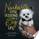 Norbert s Little Lessons for a Big Life