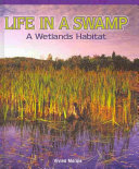 Life in a Swamp