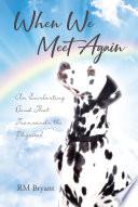 When We Meet Again Book