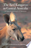 The Red Kangaroo in Central Australia