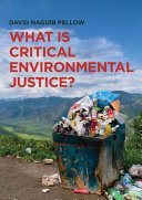 What is Critical Environmental Justice