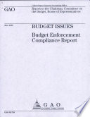 Budget Issues Book PDF
