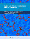 Flow and Transformations in Porous Media