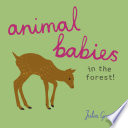 Animal Babies in the Forest!