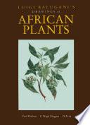 Luigi Balugani s Drawings of African Plants