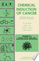 Natural, Metal, Fiber, and Macromolecular Carcinogens