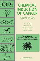 Natural  Metal  Fiber  and Macromolecular Carcinogens