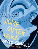 link to Home after dark : a novel in the TCC library catalog