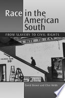 Race in the American South