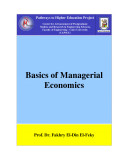 Basics of Managerial Economics