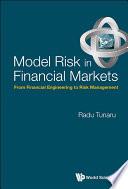 Model Risk in Financial Markets