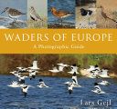 Waders of Europe