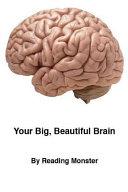 Your Big  Beautiful Brain