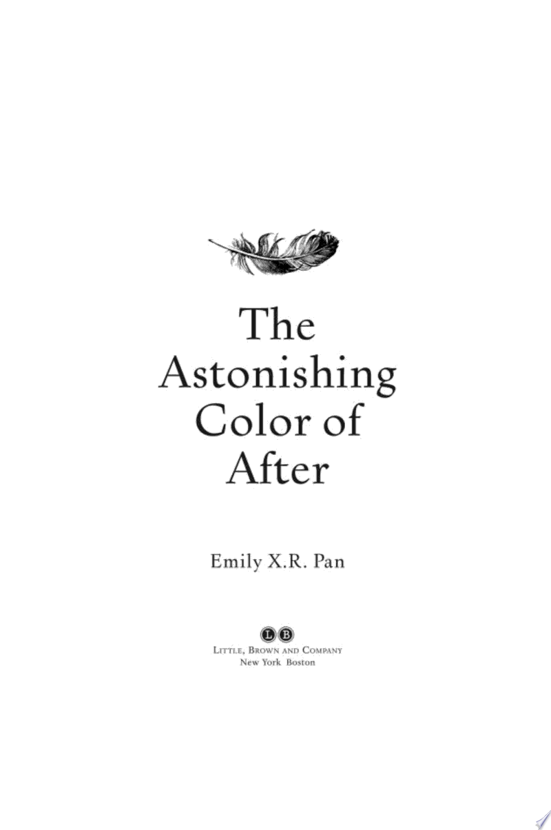 The Astonishing Color of After image