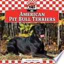American Pit Bull Terriers
