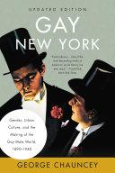 Gay New York Book