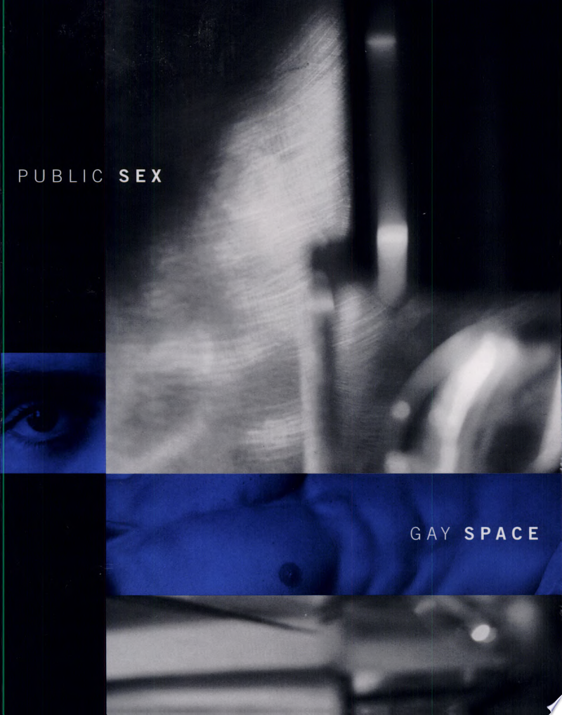 Public Sex/gay Space poster