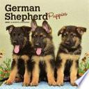 German Shepherd Puppies 2020 Calendar