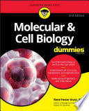 Molecular   Cell Biology For Dummies