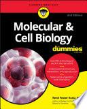"""""""Molecular & Cell Biology For Dummies"""" by Rene Fester Kratz"""