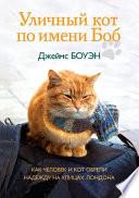 Уличный кот по имени Боб. Как человек и кот о&