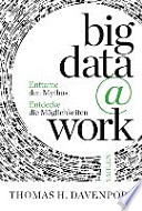 big data @ work  : Chancen erkennen, Risiken verstehen