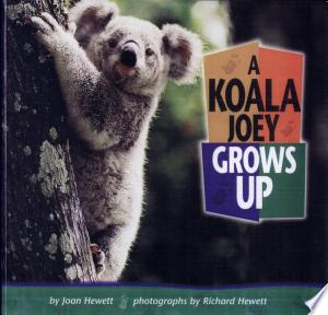 Download A Koala Joey Grows Up Free Books - Read Books