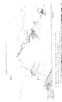 עמוד 206