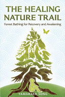 The Healing Nature Trail Forest Bathing For Recovery And Awakening