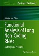 Functional Analysis of Long Non Coding RNAs