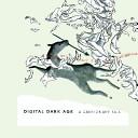 Digital Dark Age