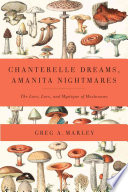Chanterelle Dreams  Amanita Nightmares