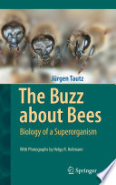 Read Online The Buzz about Bees For Free