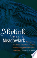 Skylark Meets Meadowlark