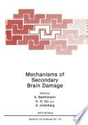 Mechanisms of Secondary Brain Damage