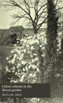 Colour Scheme in the Flower Garden